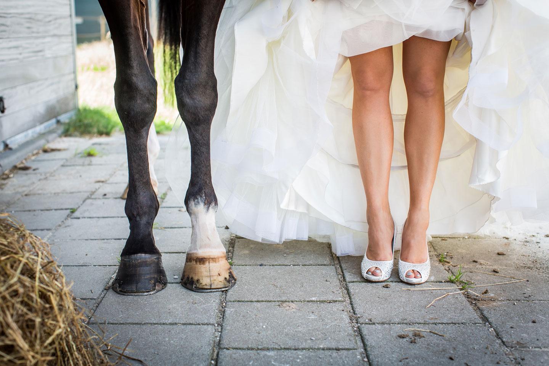 12-paard-bruidsfotografie-trouwfotograaf