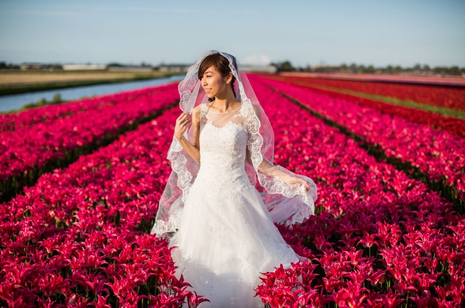Prewedding flower fields Holland