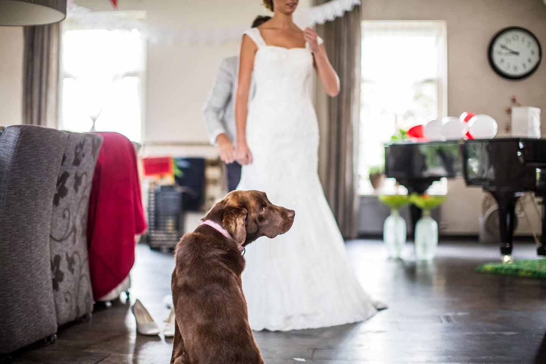 08-Naaldwijk-bruidsfotografie-trouwfotograaf