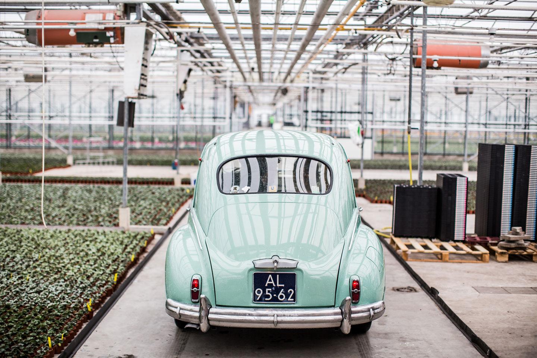 18-Naaldwijk-bruidsfotografie-trouwfotograaf