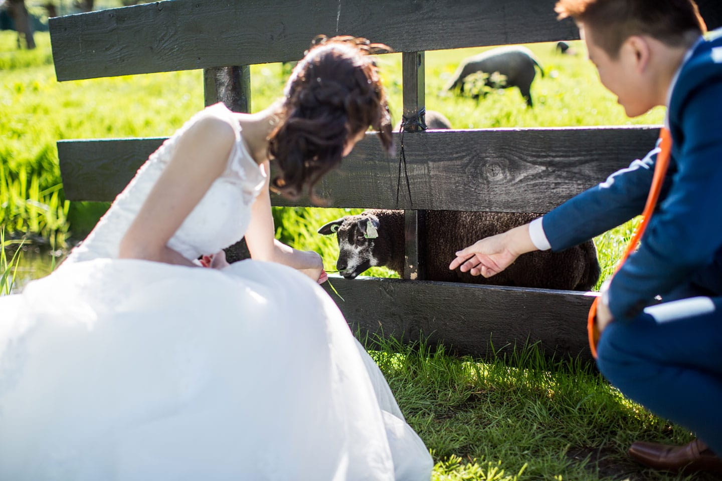 18-pre-wedding-photoshoot-Zaanse-Schans