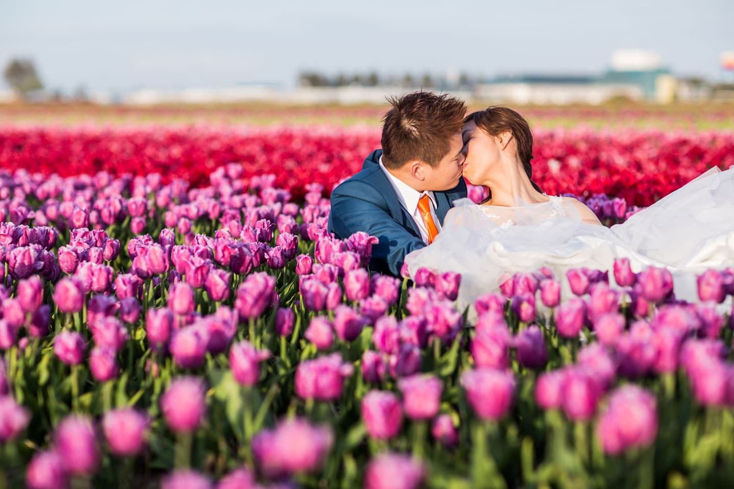 Prewedding Shoot Keukenhof