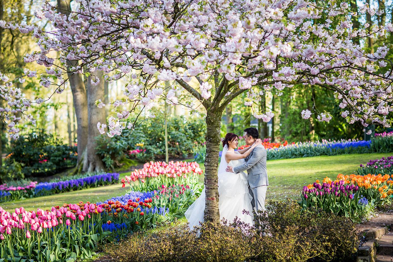 15-Keukenhof-pre-wedding-tulips