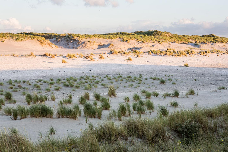 54-Elements-Beach-Gravenzande-trouwfotograaf