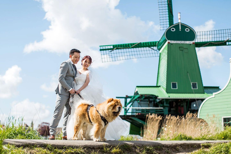 Pre wedding Windmills Holland