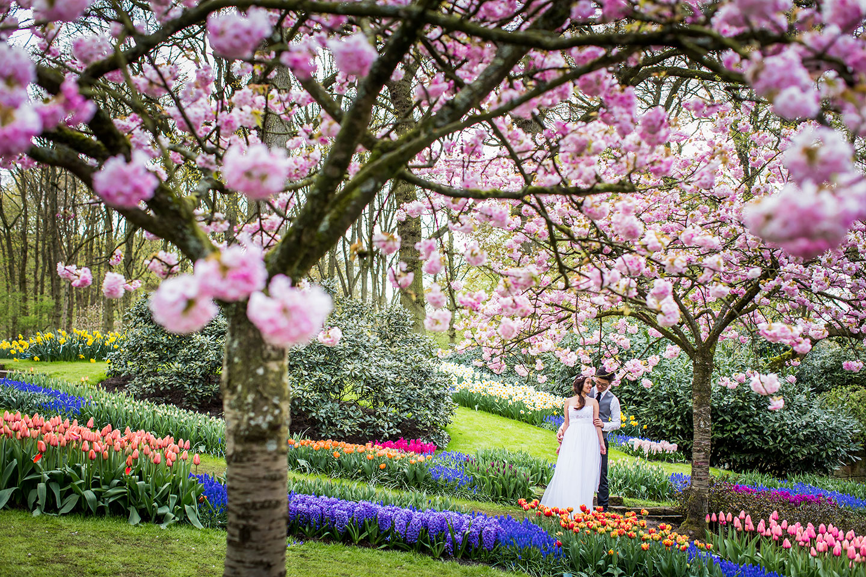 Pre wedding Keukenhof Gardens Netherlands