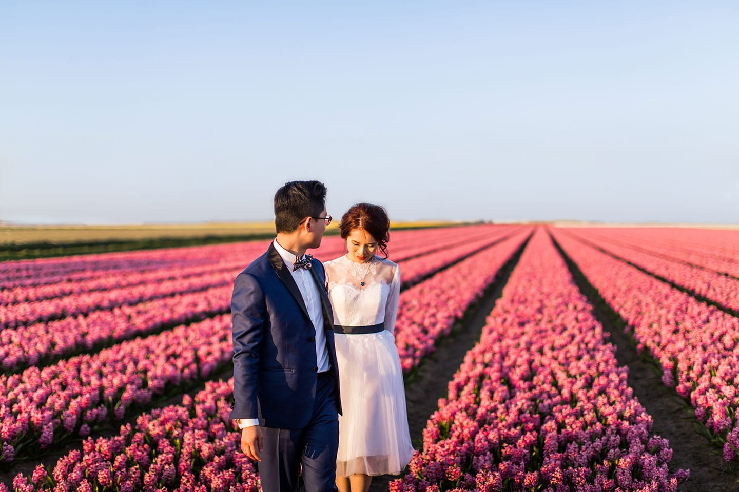 Tulip field pre wedding photography